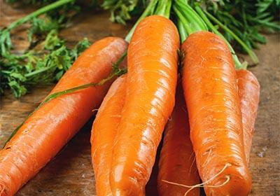 Carrot Root Powder