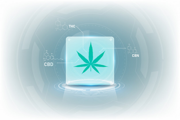 Beyond CBD and THC: The Other Cannabinoids Found in Cannabis