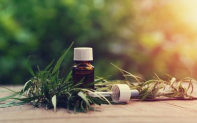 Is CBD Oil Addictive? A Discussion